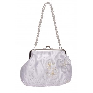 Sophie butterfly clip bag